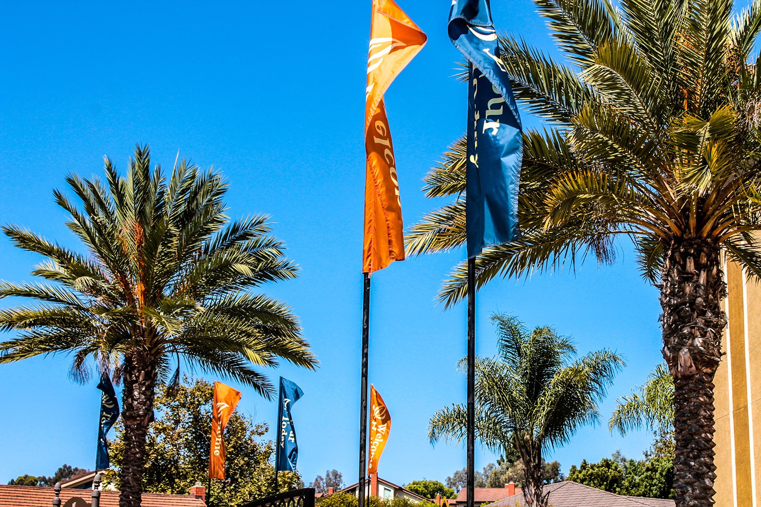 300-pacifica-flags-2